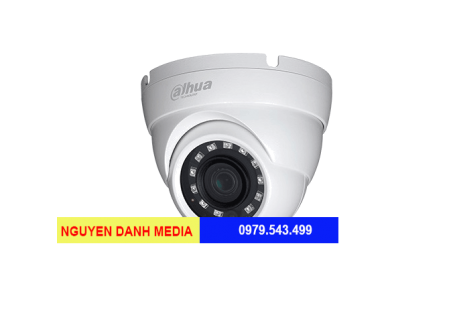 Camera Dome HDCVI Dahua HAC-HDBW1400EP